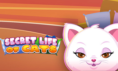 Secret Life of Cats big paying gaming slot